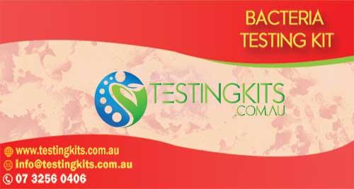 BACTERIA TESTING KIT
