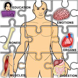 indicator muscle testing